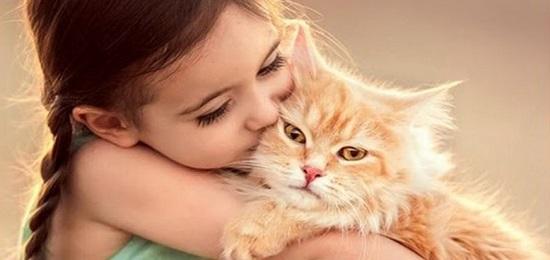помощник кошка